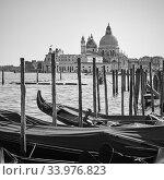 Gondolas and Santa Maria della Salute church in Venice (2018 год). Стоковое фото, фотограф Роман Сигаев / Фотобанк Лори