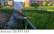 Недавно научившийся ходить ребенок гуляет вдоль ограды на площадке. Стоковое видео, видеограф Кекяляйнен Андрей / Фотобанк Лори