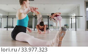 Купить «Caucasian ballet female dancers stretching up with a barre before a ballet class», видеоролик № 33977323, снято 24 октября 2019 г. (c) Wavebreak Media / Фотобанк Лори