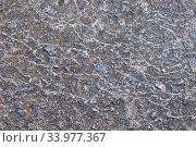 Купить «Background. Old cold-toned concrete slab, horizontal», фото № 33977367, снято 5 мая 2020 г. (c) Максим Мицун / Фотобанк Лори