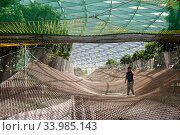 Singapore, Republic of Singapore, Bouncing and Walking Nets at the Jewel Terminal at Changi Airport. Редакционное фото, агентство Caro Photoagency / Фотобанк Лори