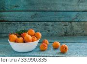 bowl with apricots on a wooden background. Стоковое фото, фотограф Tetiana Chugunova / Фотобанк Лори