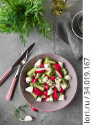 Купить «Radish, cucumber, kiwi, cheese and dill salad in a bowl on gray grunge concrete background. Seasonal Cooking, food styling.», фото № 34019167, снято 11 апреля 2019 г. (c) Nataliia Zhekova / Фотобанк Лори