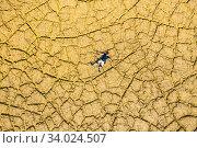 Купить «Man lying on a land cracked by drought. Yesa reservoir area. Zaragoza, Aragon, Spain, Europe.», фото № 34024507, снято 28 февраля 2020 г. (c) age Fotostock / Фотобанк Лори