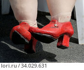 Dicke Beine mit roten Schuhen einer Stoffpuppe. Стоковое фото, фотограф Zoonar.com/Roger Salzenberg / easy Fotostock / Фотобанк Лори