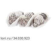 chocolate cake with coconut isolated on white. Стоковое фото, фотограф Nataliia Zhekova / Фотобанк Лори