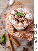Купить «tiramisu in a glass cup decorated with cocoa powder and mint leaves», фото № 34031027, снято 20 марта 2019 г. (c) Nataliia Zhekova / Фотобанк Лори