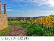 Villa Rustica Weilberg, Ortsansicht, Weinstöcke, Herbstlaub. Стоковое фото, фотограф Bernd J. W. Fiedler / age Fotostock / Фотобанк Лори