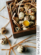 Купить «Quail eggs. Flat lay composition with small quail eggs in the wooden box on the concrete background. One broken egg with a bright yolk.», фото № 34038887, снято 15 апреля 2019 г. (c) Nataliia Zhekova / Фотобанк Лори