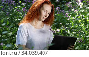 Young red-haired woman work on laptop computer among flowers in a city park, a light wind blows through her hair. Стоковое видео, видеограф Алексей Кузнецов / Фотобанк Лори