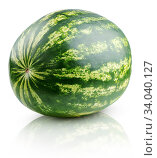 Ripe full watermelon isolated on white. Стоковое фото, фотограф Роман Самохин / Фотобанк Лори