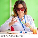 Купить «Woman dentist working on teeth implant», фото № 34046195, снято 11 июня 2018 г. (c) Elnur / Фотобанк Лори
