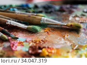 artists brushes and oil paints on wooden palette. Стоковое фото, фотограф Nataliia Zhekova / Фотобанк Лори