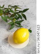 Купить «Mousse dessert in the shape of a pear fruit, orange fruit, apricot, lemon and cherry.», фото № 34047623, снято 1 февраля 2020 г. (c) Nataliia Zhekova / Фотобанк Лори