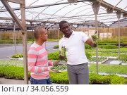Communication between two gardeners during break between work. Стоковое фото, фотограф Яков Филимонов / Фотобанк Лори