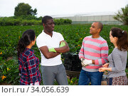 Conversation of farmers of different nationalities on field. Стоковое фото, фотограф Яков Филимонов / Фотобанк Лори