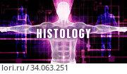 Histology as a Digital Technology Medical Concept Art. Стоковое фото, фотограф Zoonar.com/Kheng Ho Toh / easy Fotostock / Фотобанк Лори