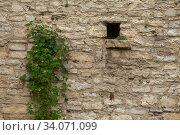 Купить «Brick wall of an old ashlar castle.», фото № 34071099, снято 7 июня 2020 г. (c) Restyler Viacheslav / Фотобанк Лори