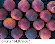 Ripe peaches in box. Стоковое фото, фотограф Яков Филимонов / Фотобанк Лори