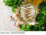 Купить «Canned small sardines in oil on background with greens», фото № 34079695, снято 11 июля 2020 г. (c) Яков Филимонов / Фотобанк Лори