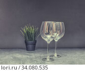 Two Empty Wine Glasses On Grey Table. Стоковое фото, фотограф Ольга Сапегина / Фотобанк Лори