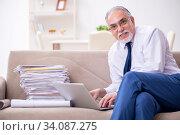 Купить «Aged businessman employee working from house», фото № 34087275, снято 4 ноября 2019 г. (c) Elnur / Фотобанк Лори