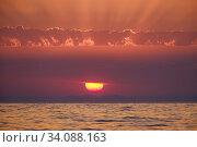 """Купить «Краснодарский край, Туапсе, летний закат на """"диком"""" пляже», фото № 34088163, снято 11 июня 2020 г. (c) glokaya_kuzdra / Фотобанк Лори"""