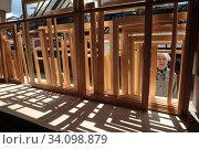 Купить «Художник выбирает подрамник, вернисаж в Измайлово», эксклюзивное фото № 34098879, снято 27 июня 2020 г. (c) Дмитрий Неумоин / Фотобанк Лори