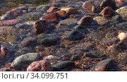 Купить «Камни в прибрежных волнах солнечным летним днем. Финский залив», видеоролик № 34099751, снято 23 мая 2020 г. (c) Виктор Карасев / Фотобанк Лори