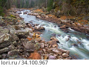 Купить «Water autumn landscape. A shallow fast mountain river with a rocky bottom. Ural.», фото № 34100967, снято 16 октября 2012 г. (c) Акиньшин Владимир / Фотобанк Лори
