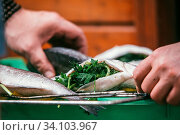 The man stuffed fresh and raw fish. With lemon and parsley on a barbeque grill in the garden in summer, ready and wait for the rost. Selective focus macro shot with shallow DOF. Стоковое фото, фотограф Zoonar.com/Sergey Krotov / age Fotostock / Фотобанк Лори