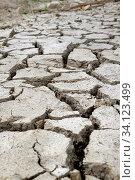 Купить «Durch lange Trockenheit aufgeplatzte Erde mit tiefen Spalten und Rissen. Hochformat. Through long drought cracked up soil with deep fissures. Vertical format.», фото № 34123499, снято 13 июля 2020 г. (c) easy Fotostock / Фотобанк Лори