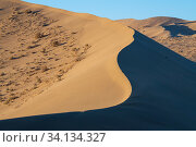 Купить «Drifting sand dunes in the Gobi desert, near Dunhuang in Gansu, China.», фото № 34134327, снято 11 июля 2020 г. (c) Nature Picture Library / Фотобанк Лори