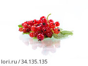 Купить «ripe summer berry red currant isolated on white», фото № 34135135, снято 1 июля 2020 г. (c) Peredniankina / Фотобанк Лори