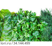 Natural food background - various wet fresh herbs (beet greens, dill, parsley) close-up isolated on white background. Стоковое фото, фотограф Zoonar.com/Valery Voennyy / easy Fotostock / Фотобанк Лори