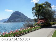 Park Ciani at the lake Lugano on a spring sunny day. View of the San Salvatore mountain. Town of Lugano, canton of Ticino, Switzerland, Europe. (2018 год). Стоковое фото, фотограф Bala-Kate / Фотобанк Лори