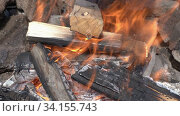 Wooden logs burn in bonfire, enveloped in red flame. Стоковое видео, видеограф А. А. Пирагис / Фотобанк Лори