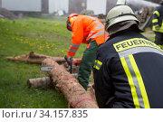 Купить «Feuerwehrübung, üben für den Notfall Durchschneiden eines Baumstamm», фото № 34157835, снято 14 июля 2020 г. (c) age Fotostock / Фотобанк Лори