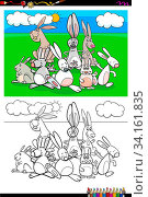 Cartoon Illustration of Funny Rabbits Animal Characters Coloring Book Activity. Стоковое фото, фотограф Zoonar.com/Igor Zakowski / easy Fotostock / Фотобанк Лори
