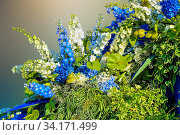 Beautiful floral composition from white and blue delphiniums, hydrangeas, anthuriums and variegated leaves of decorative plants Gorgeous bouquet from different flowers and plants - work of florist. Стоковое фото, фотограф Zoonar.com/Rvo233 / easy Fotostock / Фотобанк Лори