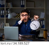 Employee staying late to finish work on auditing. Стоковое фото, фотограф Elnur / Фотобанк Лори