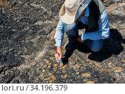 Купить «Paleontologist discovered some fossils and cleans it with a brush», фото № 34196379, снято 13 июня 2020 г. (c) Евгений Харитонов / Фотобанк Лори