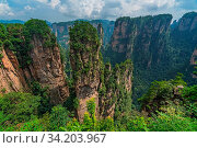 Vertical karst pillar rock formations as seen from the Enchanting terrace viewpoint, Avatar mountains nature park, Zhangjiajie, China. Стоковое фото, фотограф Zoonar.com/Pawel Opaska / easy Fotostock / Фотобанк Лори