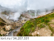 Купить «Picturesque view of volcanic landscape, aggressive hot spring, erupting fumarole, gas-steam activity in crater active volcano», фото № 34207331, снято 7 сентября 2014 г. (c) А. А. Пирагис / Фотобанк Лори