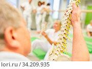 Mann hält ein Wirbelsäule Modell in einer Schulung oder Fortbildung für Physiotherapie. Стоковое фото, фотограф Zoonar.com/Robert Kneschke / age Fotostock / Фотобанк Лори