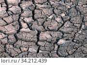 Купить «Land after a drought, chapped ground. Unusual heat, frequent droughts, total aridization, desert advancing as a consequence of climate change, global warming», фото № 34212439, снято 14 июля 2020 г. (c) easy Fotostock / Фотобанк Лори