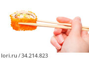 Female hand with wooden chopsticks holds california ebi sushi roll isolated on white background. Стоковое фото, фотограф Zoonar.com/Valery Voennyy / easy Fotostock / Фотобанк Лори