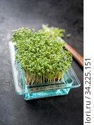 Купить «Fresh garden cress germ bud with knife as top view on a black board with copy space», фото № 34225151, снято 15 июля 2020 г. (c) easy Fotostock / Фотобанк Лори