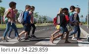 Group of kids with school bags crossing the road. Стоковое видео, агентство Wavebreak Media / Фотобанк Лори