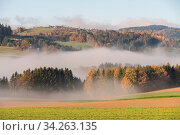Leuchtend schöne Herbstlandschaft aus dem Böhmerwald im Nebel, Austria. Стоковое фото, фотограф Zoonar.com/Alfred Hofer / easy Fotostock / Фотобанк Лори